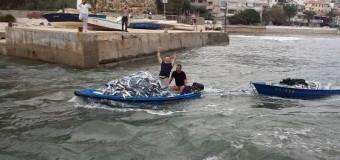 Mbi 1.5 tonelatë qefull të zënë nga peshkataret shitet në kohë rekord (video)
