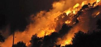 Zjarre Podgoricë dhe në bregdetin e Malit të Zi, qeveria kërkon ndihmë