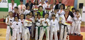 E vertetë, 28 garues të Tawkwondo Ulqini fitojnë 24 medale në Podgoricë