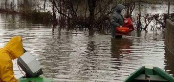 Pamje të frikshme nga fshati Lisen Bore, rritet niveli i ujit (video, foto)