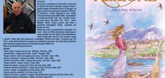 """""""Art Club"""" boton përmbledhjen me tregime për fëmijë """"Princesha Albionë"""" të shkrimtarit Asllan Bisha"""