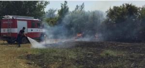 zjarr-shas-brajshe-1