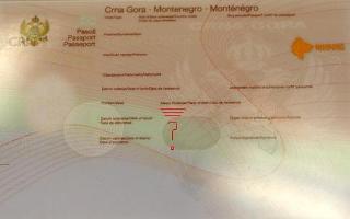MPJ e Malit të Zi: Diasporës nuk i kontestohet nënshtetësia